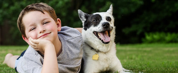 Which Dogs Are Good For Kids?