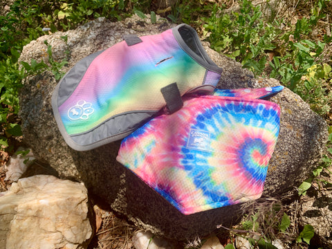 The Canada Pooch Cooling Vest and the Canada Pooch Cooling Bandana are laying on top of a rock in the center of a path covered by long grass and other small rocks. The Canada Pooch Cooling Vest has a rainbow ombre pattern while the Canada Pooch Cooling Bandana has a rainbow tie-dye swirl pattern.