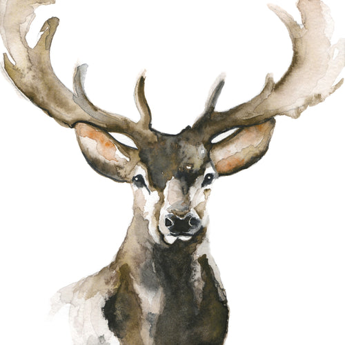 Mini Stag Canvas Print