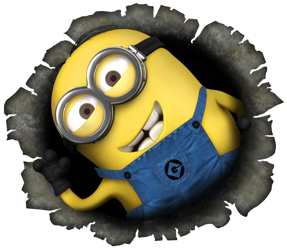 Check Out Our Selection Of Despicable Me Minions Car Accessories Below