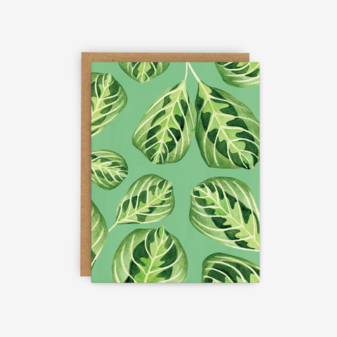 Prayer Plant Card