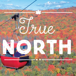 Typeface Highlight: True North