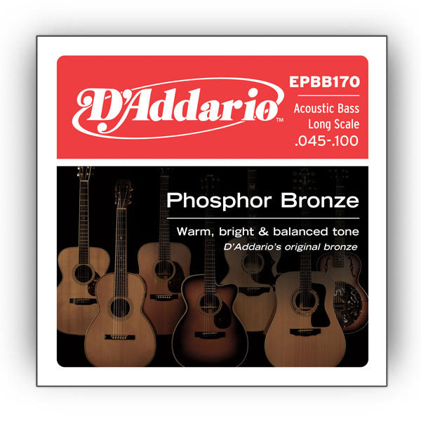 D'Addario EPBB170 Acoustic Bass Long Scale Strings (.045-.100)