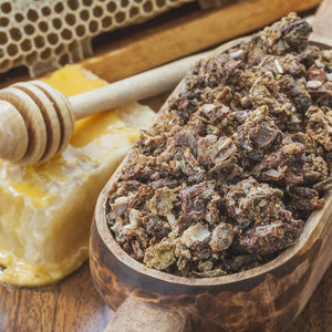 Why Bee Propolis is the Next Big Thing