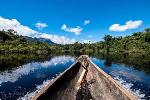 Boat travelling through Amazon rainforest jungle