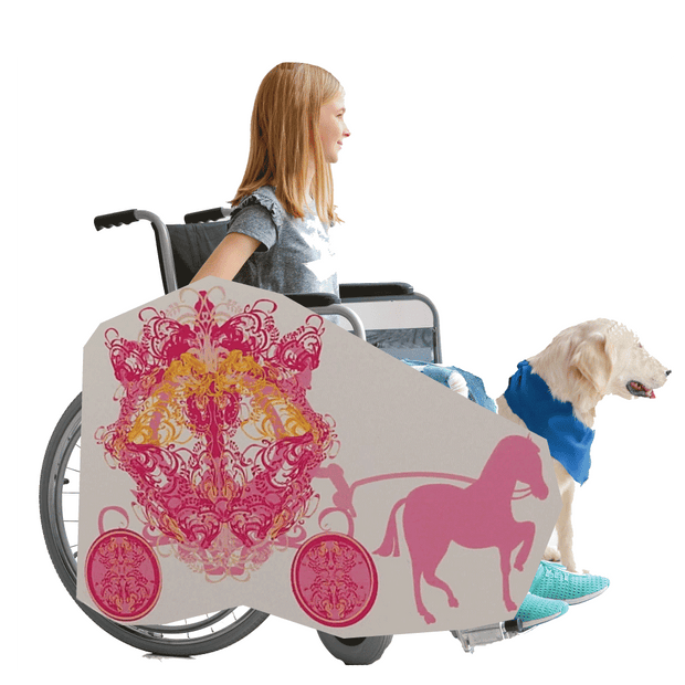 Princess Horse and Buggy 3 Wheelchair Costume Child's