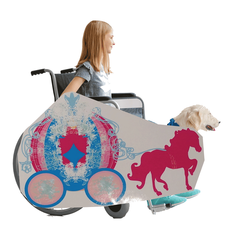 Princess Horse and Buggy 2 Wheelchair Costume Child's
