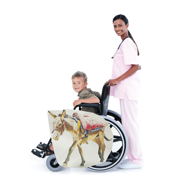 Donkey with Saddle Wheelchair Costume Child's
