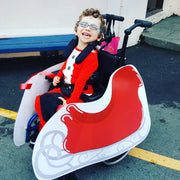 Santa's Sleigh Wheelchair Costume Child's