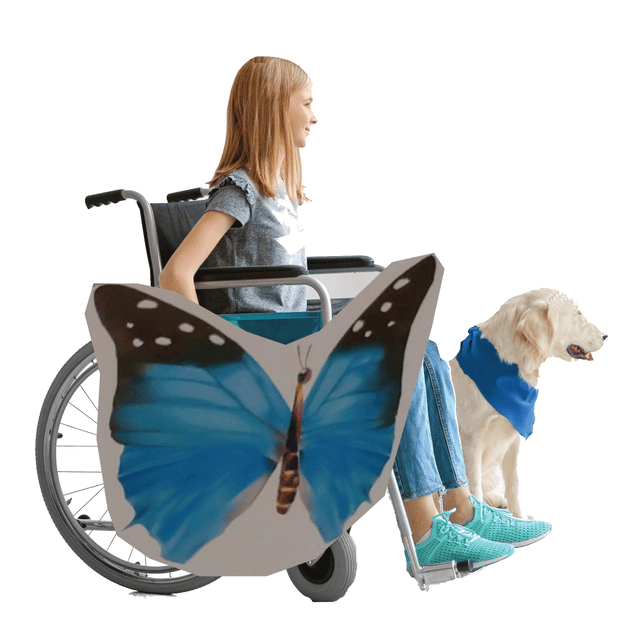 Blue Butterfly 2 Wheelchair Costume Child's