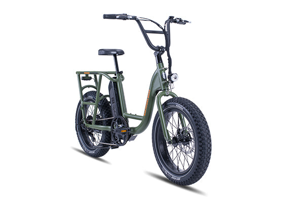A green RadRunner electric utility bike