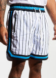 Jordan 2.0 Basketball Shorts (Magic Home)