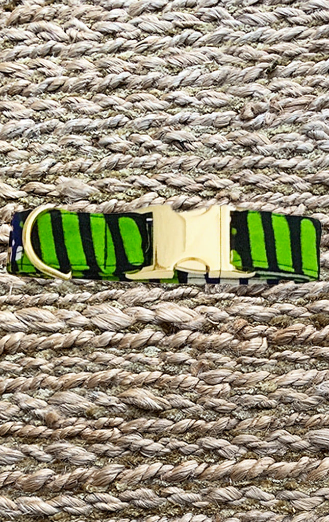 Doggy Collar - Green Navy - Surf Souleil