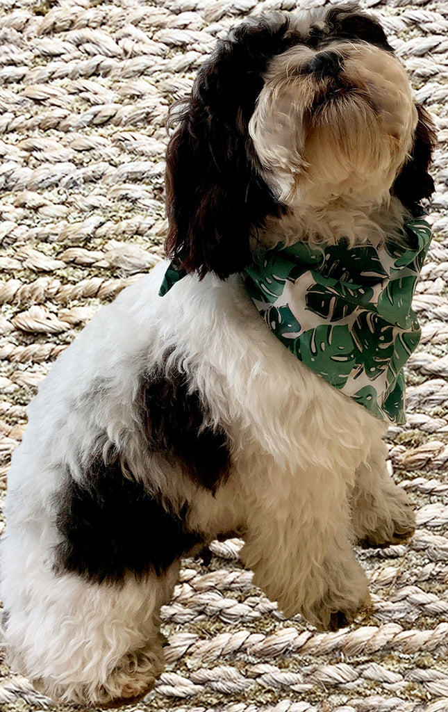 Palm Leaf Print Doggy Bandana - Reversible
