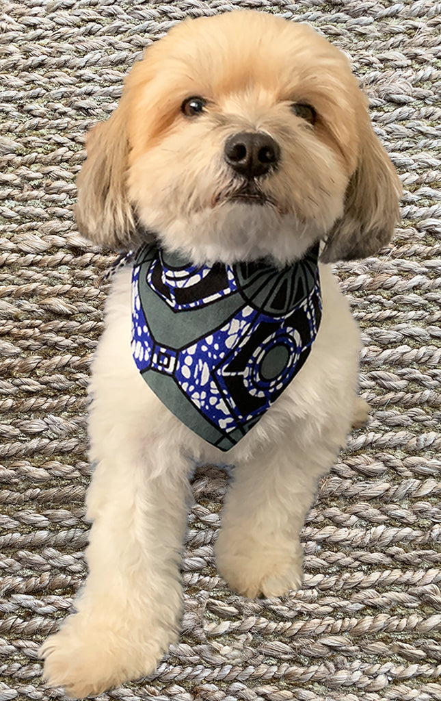 Doggy Bandana - Reversible Royal Blue - Surf Souleil