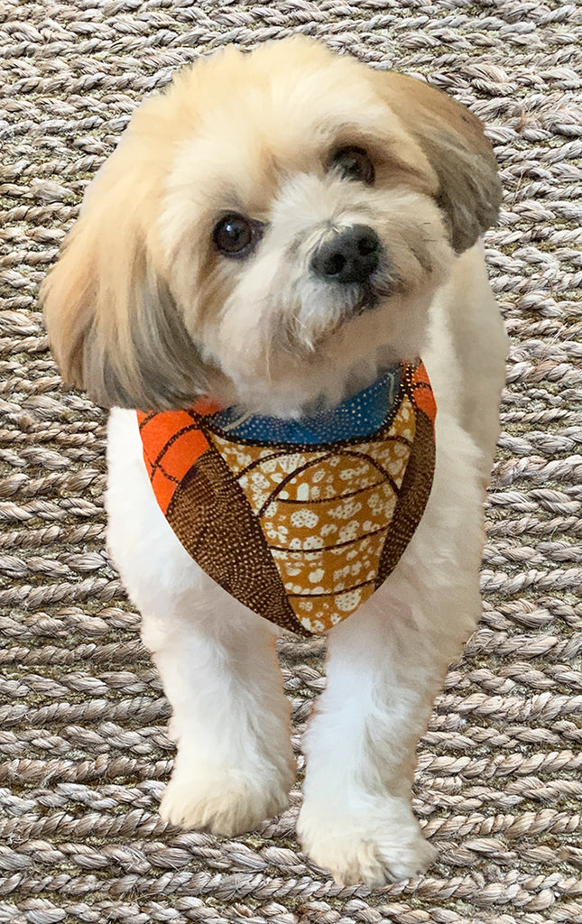 Doggy Bandana - Golden Orange - Surf Souleil
