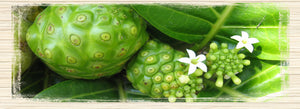 Hawaiian Healing - The Noni Plant