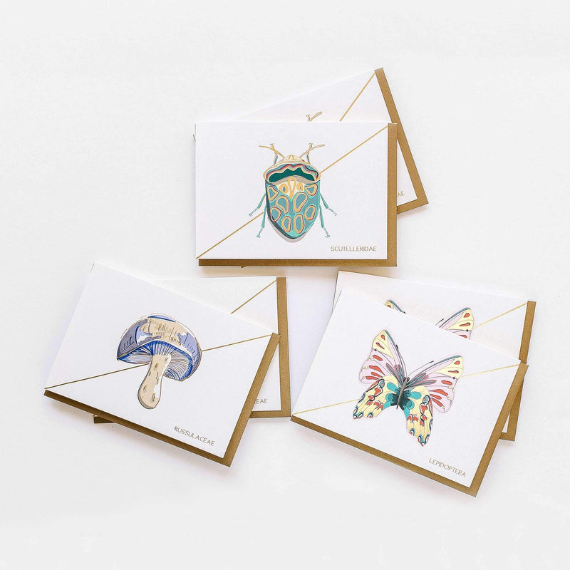 Into The Woods Stationery - Boxed Set of Six