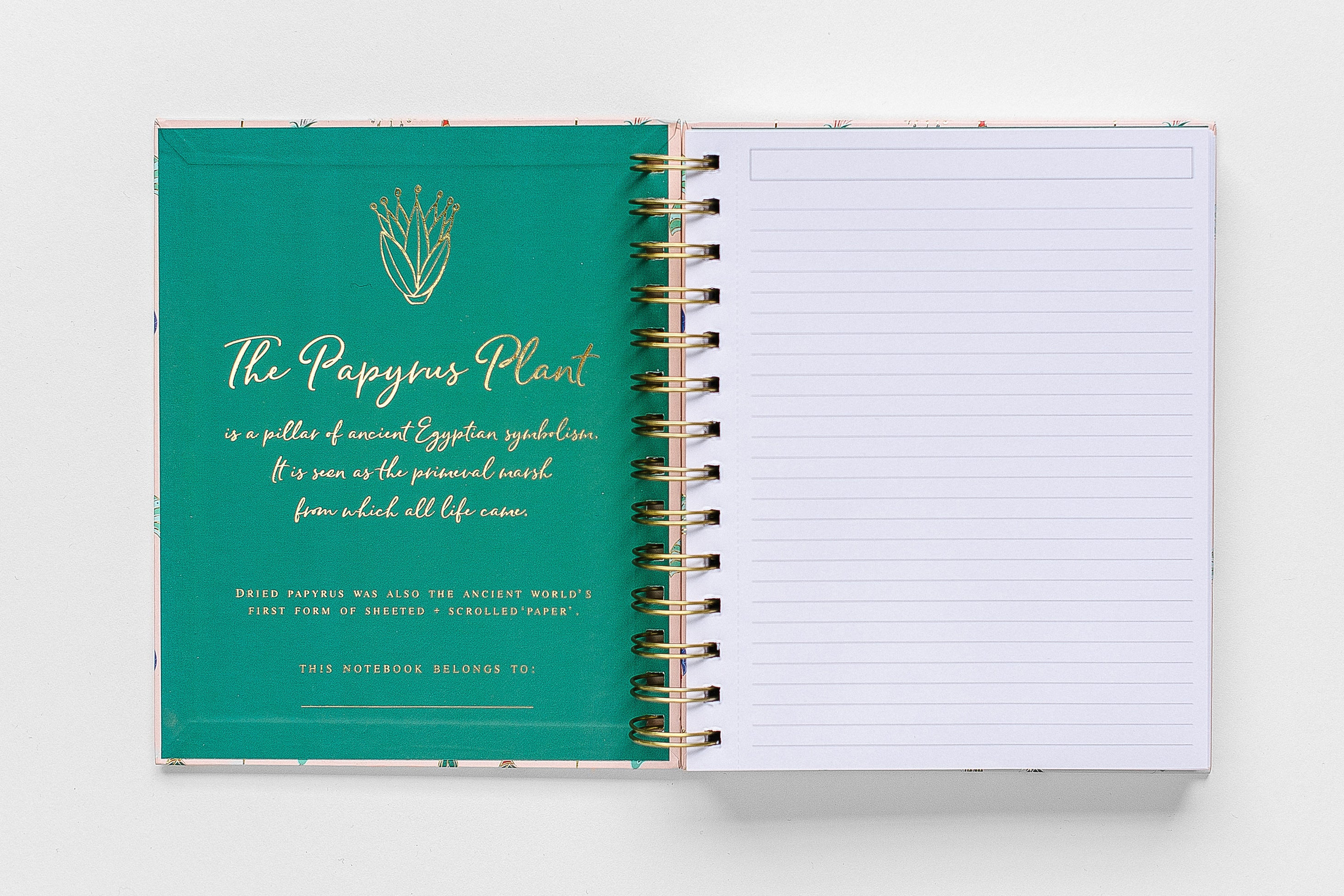 Egypt Papyrus Spiral Notebook