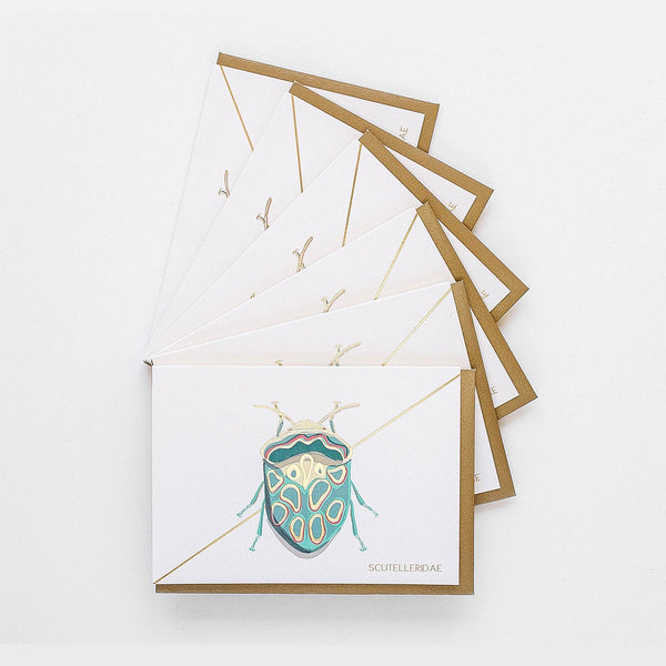 Teal Beetle Stationery - Boxed Set of Six
