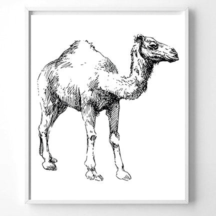 Wall Art Camel