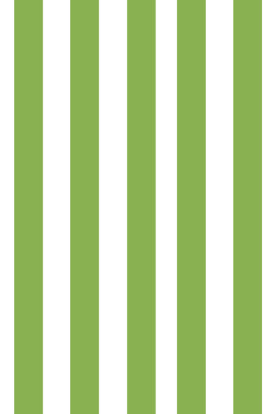 Woolf With Me Organic Boppy Nursing Pillow Cover Stripes color_kelly-green
