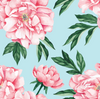 Organic Changing Pad Cover Peonies