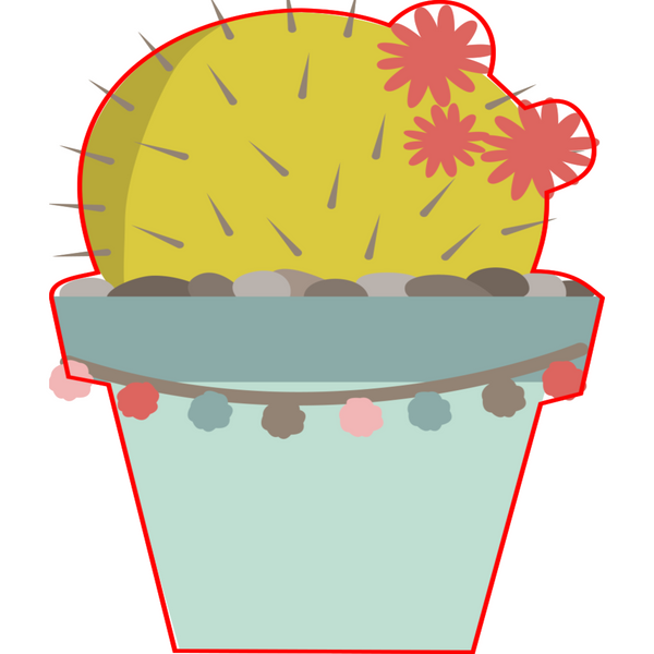 Holiday Cactus 8