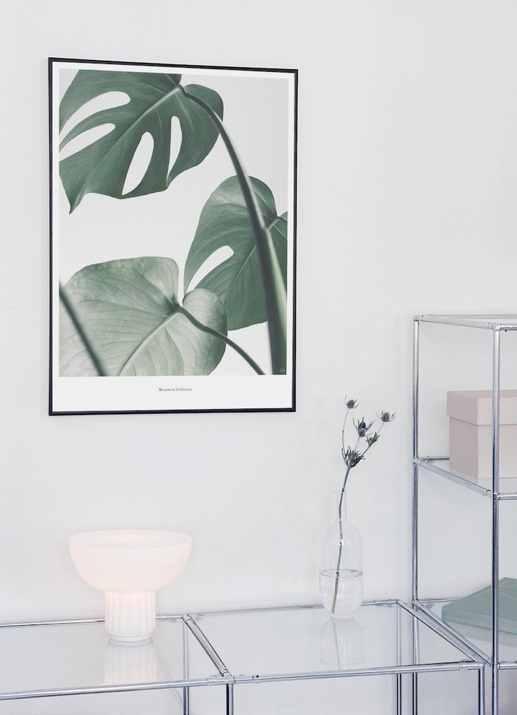 monstera plakat fra Beautiful World