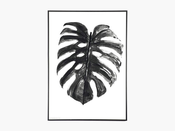 Plants - Monstera Deliciosa - Sort/Hvid fra By Garmi