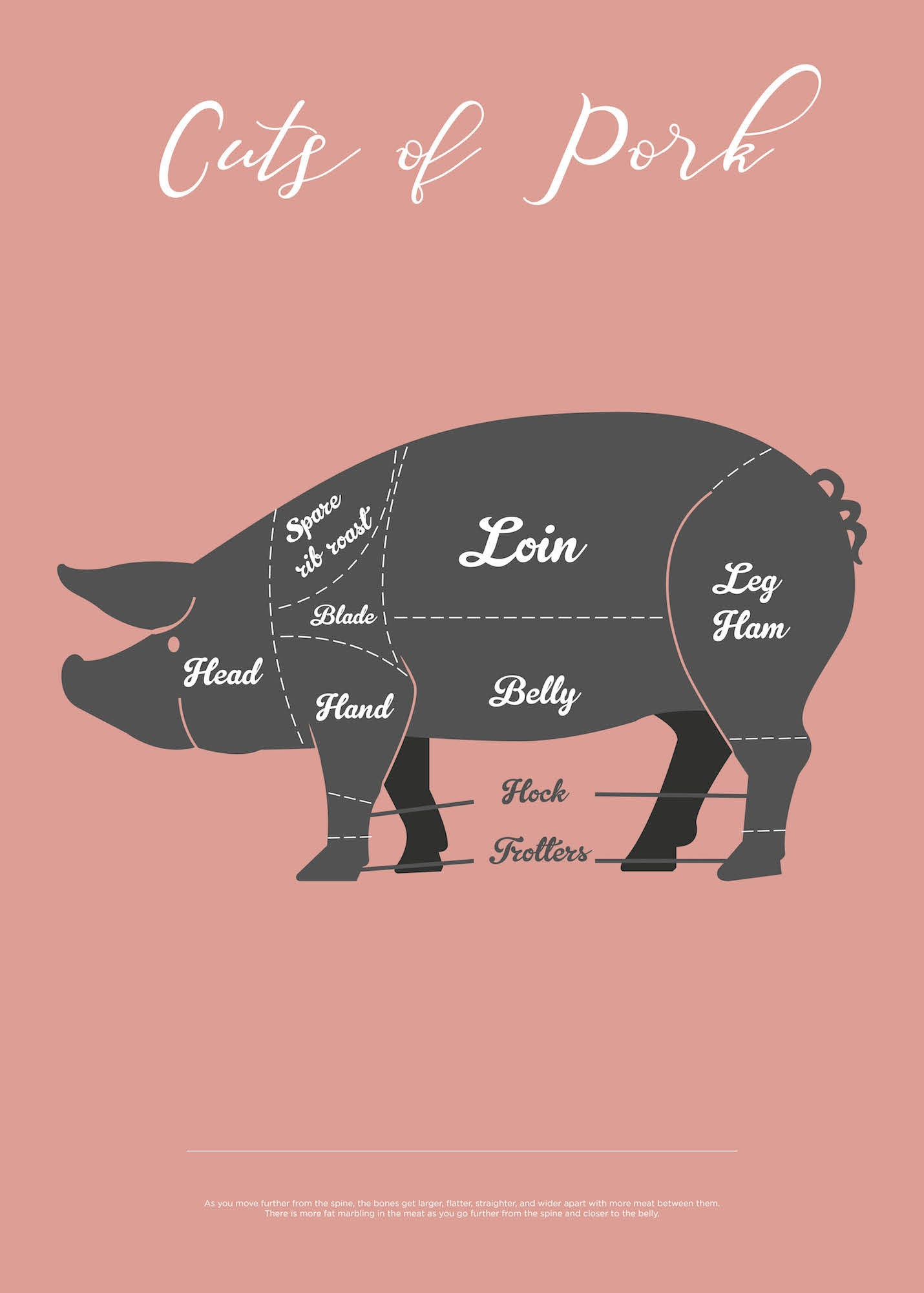 Cuts Of Pork - Rosa fra Paper Stories