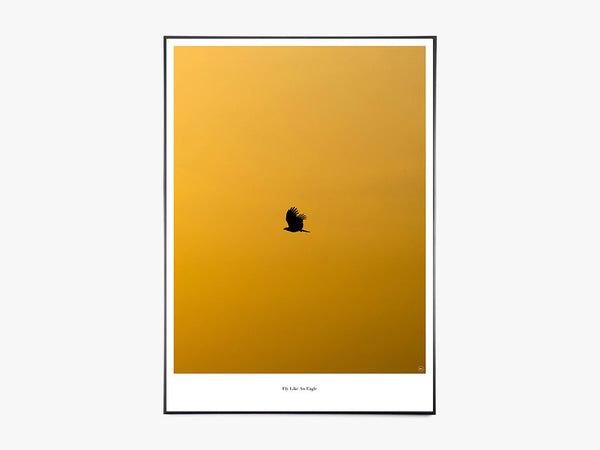 Fly Like An Eagle - Beautiful World Plakat fra Beautiful World