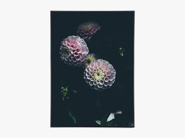 Dark Bloom - Beautiful World Plakat fra Beautiful World