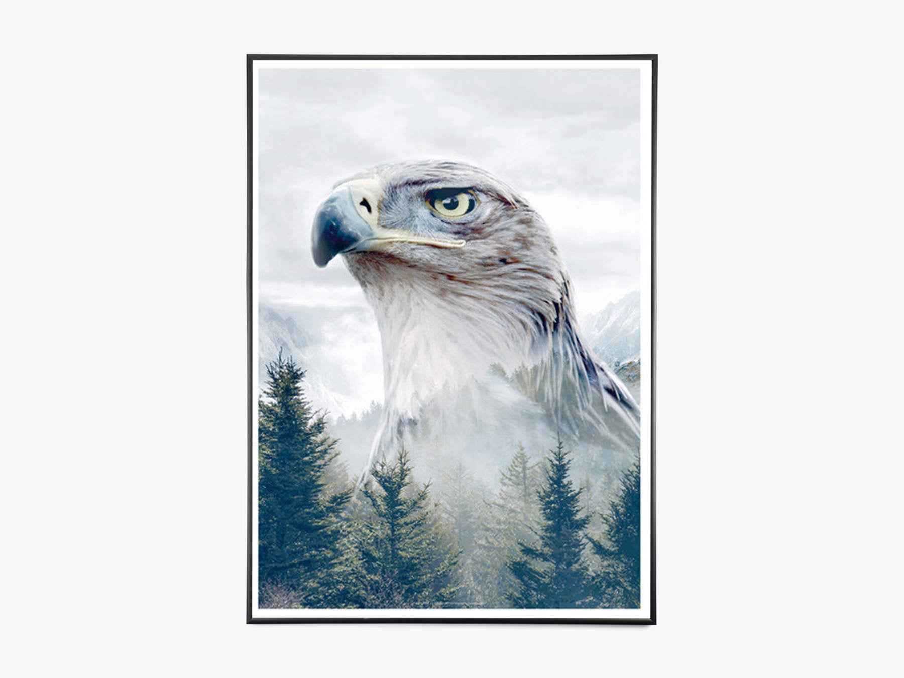 Eagle - Portraits fra What We Do