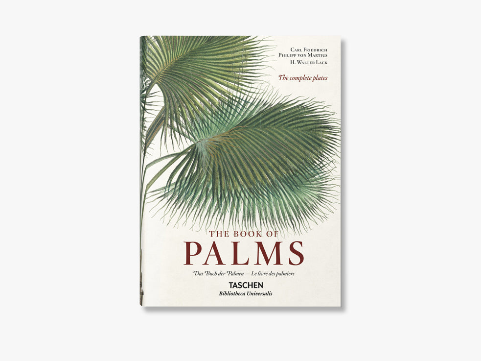 The Book of Palms XL fra NEW MAGS