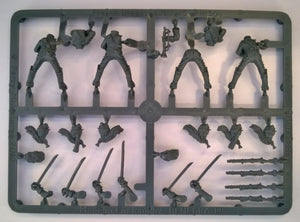 Perry Miniatures French Napoleonic Line Dragoons Sprue