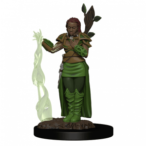 Human Druid (D&D Icons Of The Realms)