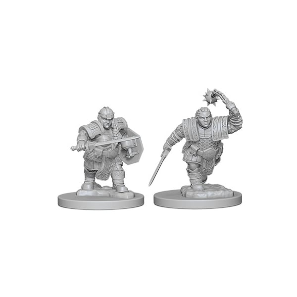 Female Dwarf Fighter (D&D Nolzur's Marvelous Miniatures)