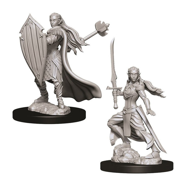 Female Elf Paladin (D&D Nolzur's Marvelous Miniatures)