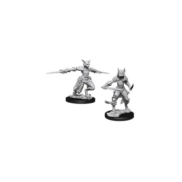 Female Tabaxi Rogue (D&D Nolzur's Marvelous Miniatures)