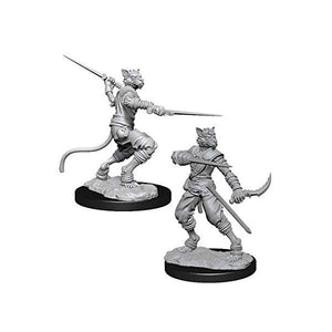 Male Tabaxi Rogue (D&D Nolzur's Marvelous Miniatures)