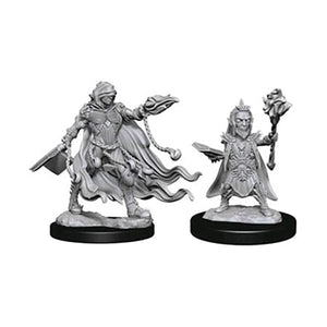 Evil Wizards (WizKids Deep Cuts Miniatures)
