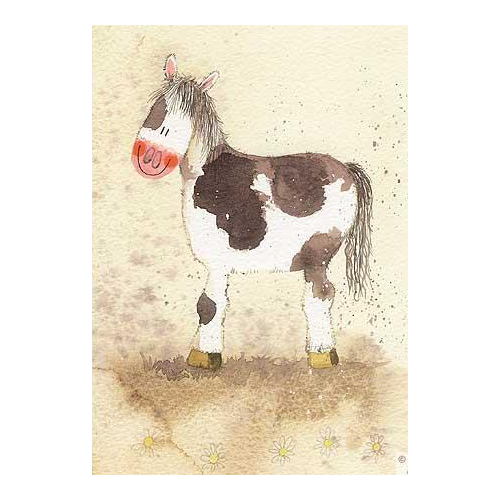 Alex Clark Blank Card - Patchwork Pony - All Horsey Gifts