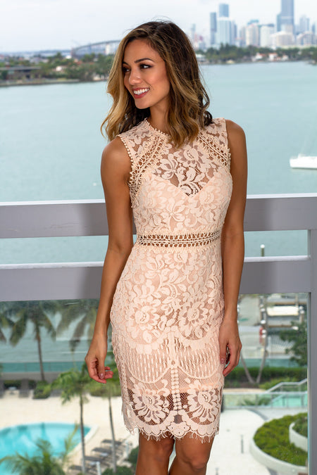 Blush Lace Embroidered Short Dress