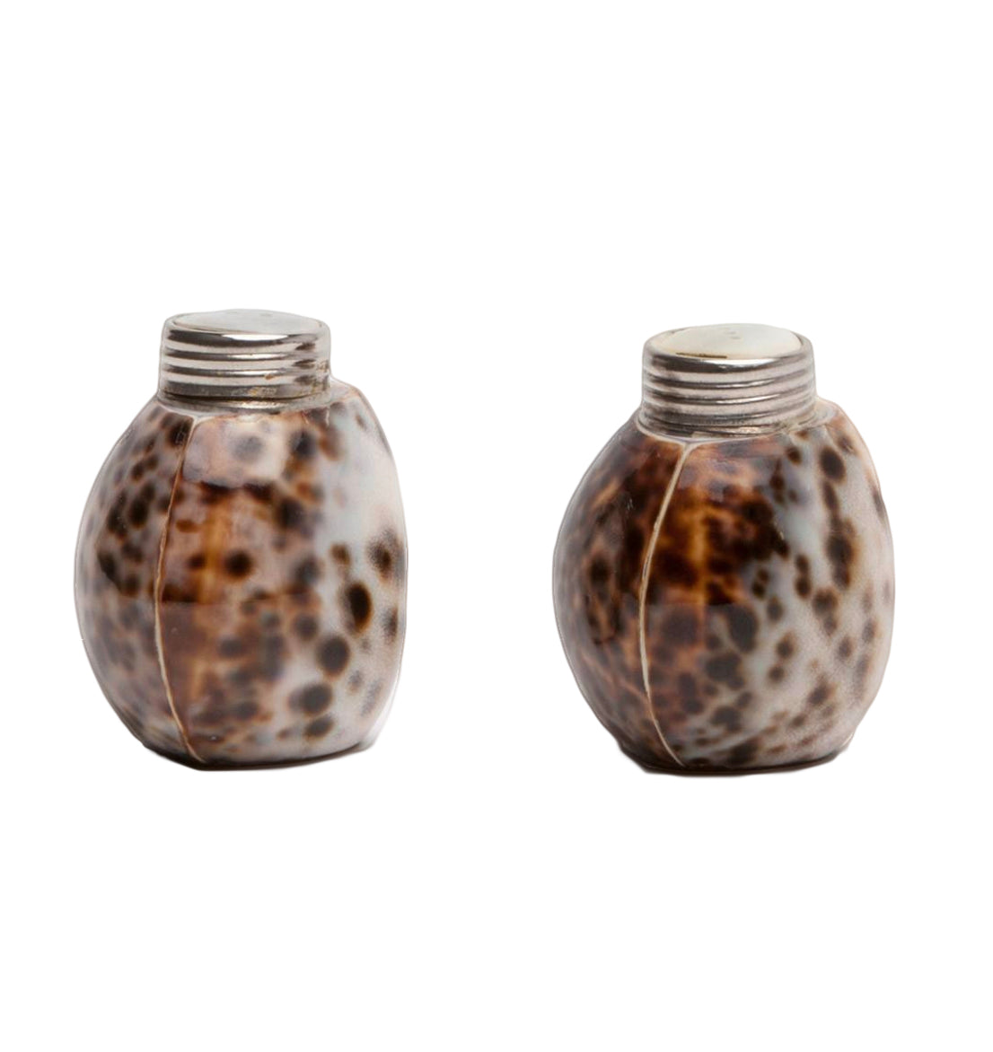 Nora Tiger Cowrie Salt and Pepper Shakers - Amy Berry Home