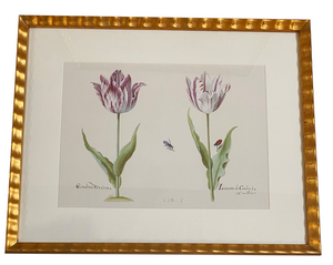 Tulips for Two in Gold Scallop Frame