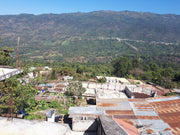 Wholesale Guatemala • Huehuetenango • FairTrade® & Organic