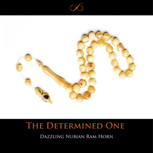 The Determined One- Dazzling Nubian Ram Horn