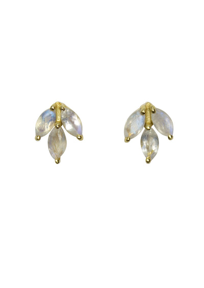 Laurel Rainbow Moonstone Gold Earrings