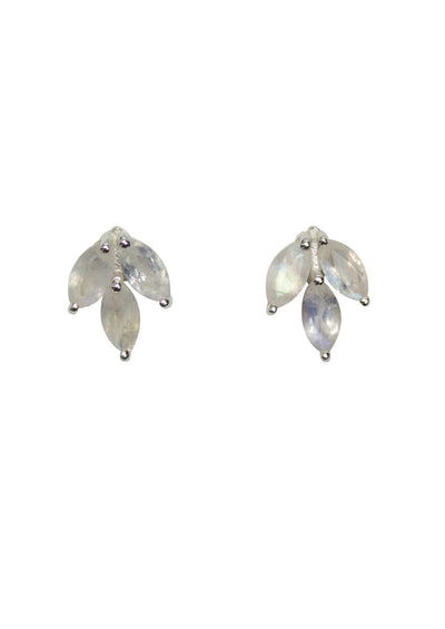 Laurel Rainbow Moonstone Silver Earrings